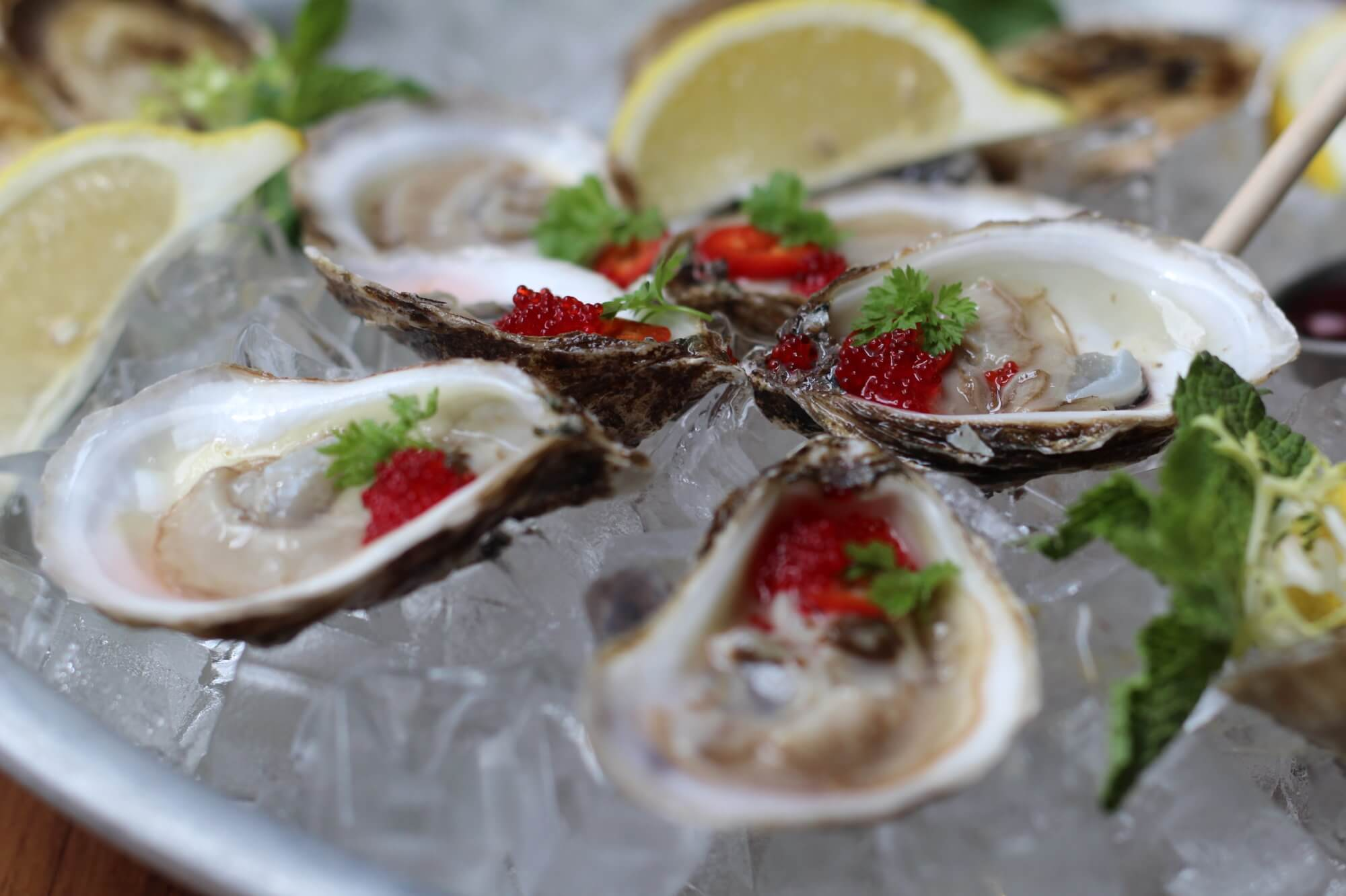 Oyster $1